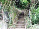 裏山展望台へ続く石段の中腹(周辺)