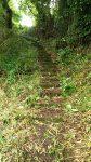 展望台東屋へ登る石段02(周辺)