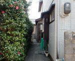 玄関までの椿ロード(玄関)